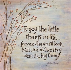 quote-enjoy-the-little-things-in-life-1-3